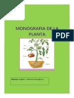 monografia de la planta.docx