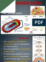 bacterias-mod-2017.pptx