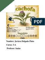Alcachofa.