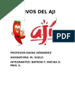 Cultivo Del Ají Matias y Bayron