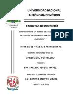 SIMULACION DE YNF.pdf