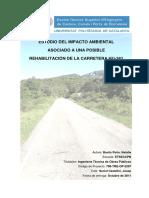 Estudio del Impacto Ambiental carretera HU-341.pdf