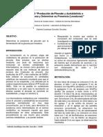 91606324 Practica 6 Preparacion de Piruvato