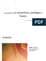 Conectivo, cartílago y hueso.pdf