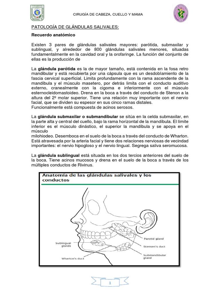 Patología de Glándulas Salivales