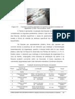 Paineis de Bambu Para Habitacoes Economicas 2006_176