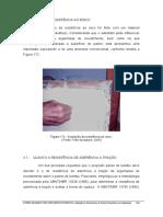 Paineis de Bambu Para Habitacoes Economicas 2006_181