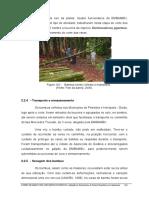 Paineis de Bambu Para Habitacoes Economicas 2006_149