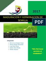 Maduracion y Germinacion de Semilla Informe Final
