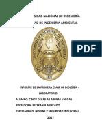 INFORME DE BIOLOGIA CHINCHI.docx