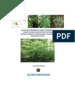 Mengenal Jenis Tumbuhan Paku Hutan Payahe(Compres)