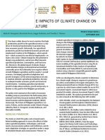Economywide Impact of Climate Change on Agriculture