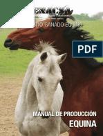 Manual Equinos