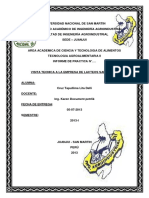 154528841-Lacteos-San-Martin.docx
