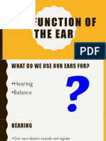 the function of the ear