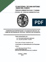 253T20110018.pdf