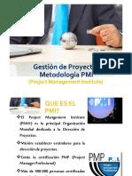 Resumen Metodologia PMI