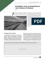 Arándanos - Variedades Más Prometedoras en El Valle 16 de Octubre - Chubut - InTA