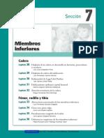 Ortopedia Rosselli