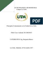 Contaminación  ecologia.docx