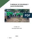 Informe de Seguridad e Higiene Ocupacional