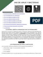 03-Cromosomas de Virus y Bacterias
