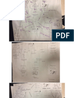 evolution connections map - student artifacts