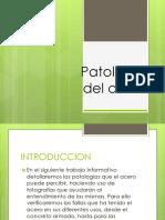 114017015-Patologias-del-acero-1.pptx