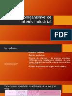Microorganismos de Interés Industrial