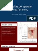 Anomalias Del Aparato Genital Femenino