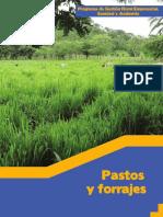 Manual Pastos y Forrajes CRS USDA CIAT 2015