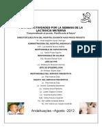 Plan de Lactancia Materna II