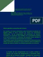 2.MARCO GENETICO CONVECTIVO DE LA TIERRA.pptx