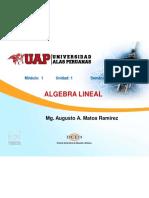 SEMANA 2 - DETERMINANTES.pdf.pdf.pdf