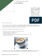 Efectos de La Cafeína en El Organismo - Punto Fape