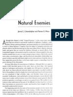 9.Natural Enemies