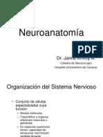 Neuroanatomía Imp.