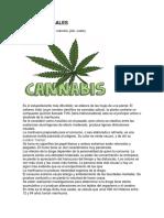 DROGAS ILEGALES.docx