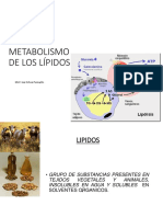 METABOLISMO LÍPIDOS (1).pdf