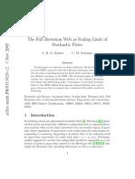 Brownian Flow and FBW