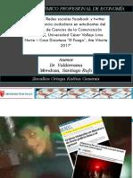 EJEMPLO DIAPOSITIVAS PARA SUSTENTACION CUALITATIVA
