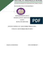 Delfina Cruz Hernandez_determinación Del Credito Fiscal_corecto