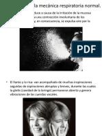 Alteraciones de La Mecánica Respiratoria Normal Anatomia Expo