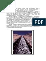 CINTAS TRANSPORTADORAS[1][1].doc