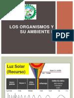 3-5_B_OrganismoAmbiente.pptx