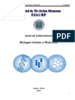 Guia de Laboratorio BCM 1-5