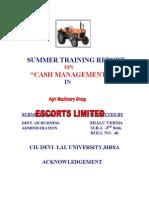 19556540 Summer Training Report Sabhya