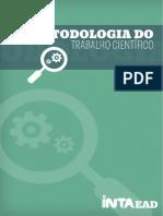 290173647-Metodologia-Do-Trabalho-Cientifico.pdf