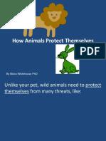 Animal Protection Ada Pation s Teach