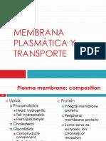 b.membrana Plasmática